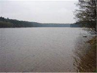 Jezioro G��bokie - Ga��z�w